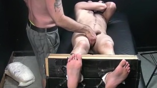 guy name dDog retrained in stocks a tickled