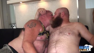 Salt-n-pepper silver daddy gets ass fucked by bald bearded top