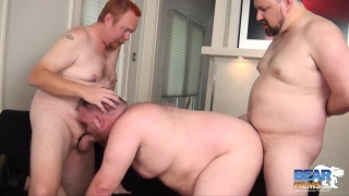 Bama Cub is super horny and gets fucked by room mates
