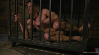 Trenton Ducati taunts Nate Grimes in a cage