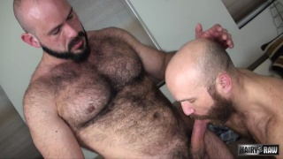 hairy top hunk Marco Bolt bare fucks Nixon Steele
