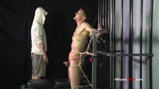 Even slave boy's cock and balls are tightly roped