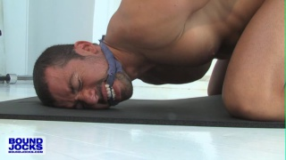 Video ansehen bound jock Dominik Rider struggles out of his ropes