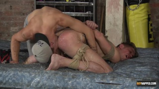 Tenderized & Buggered Hard with Jack Taylor & Tristan Crown