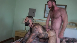 redhead and very hairy man fuck each other